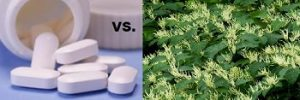 NSAIDS and Steroids vs Plant-Based Medicine